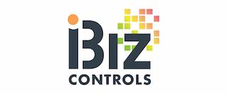 iBiz Controls Consulting LLC